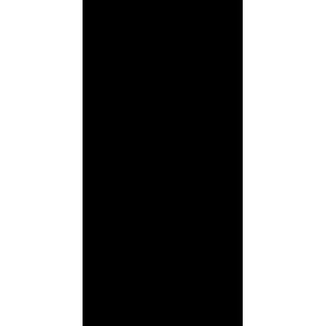 Фигуристка на коньках
