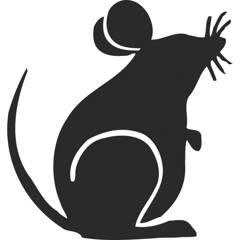 словосочетание картинка крысы для вырезания этому проникновение