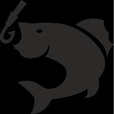 Рыба почти на крючке