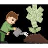 Человек поливает денежное дерево