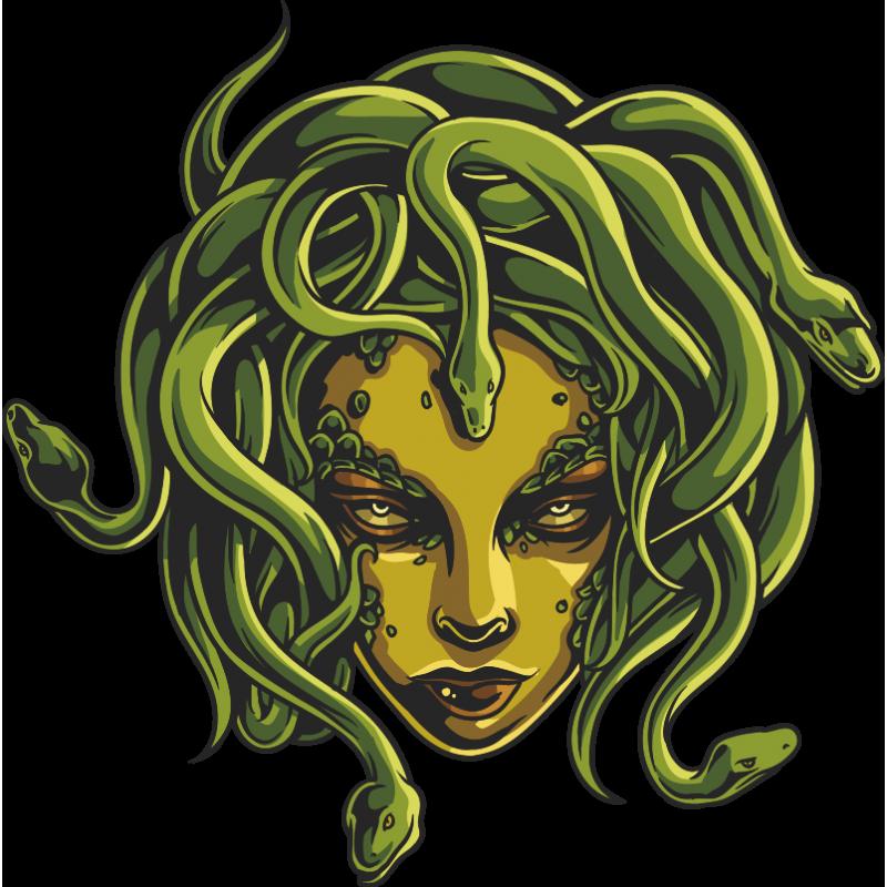 Картинка голова медузы