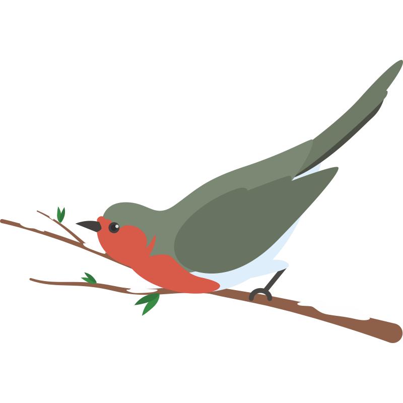 Привет, картинки для детей птичка сидит на ветке
