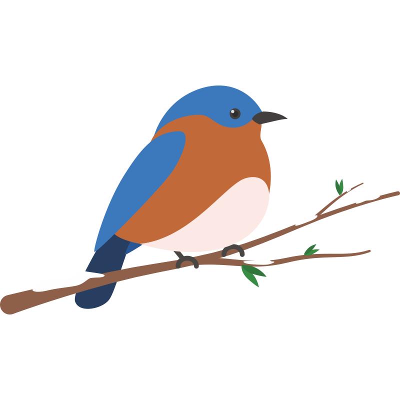 Картинка рисунок птичка на ветке