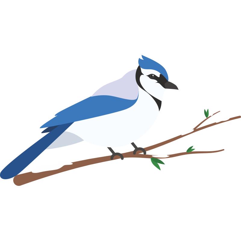 картинка птичка сидит погожие, светлые
