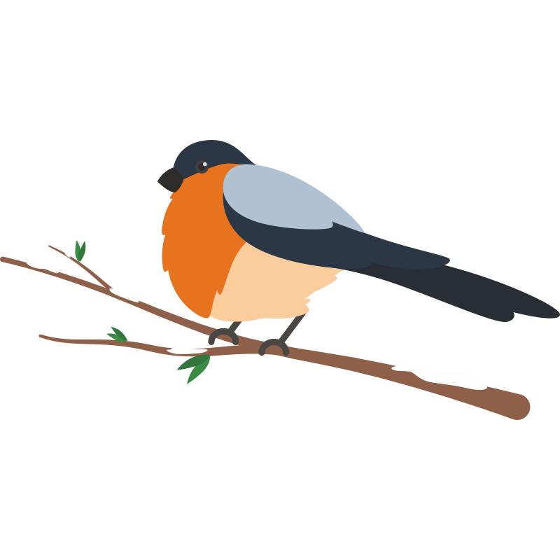 Картинки для детей птичка сидит на ветке