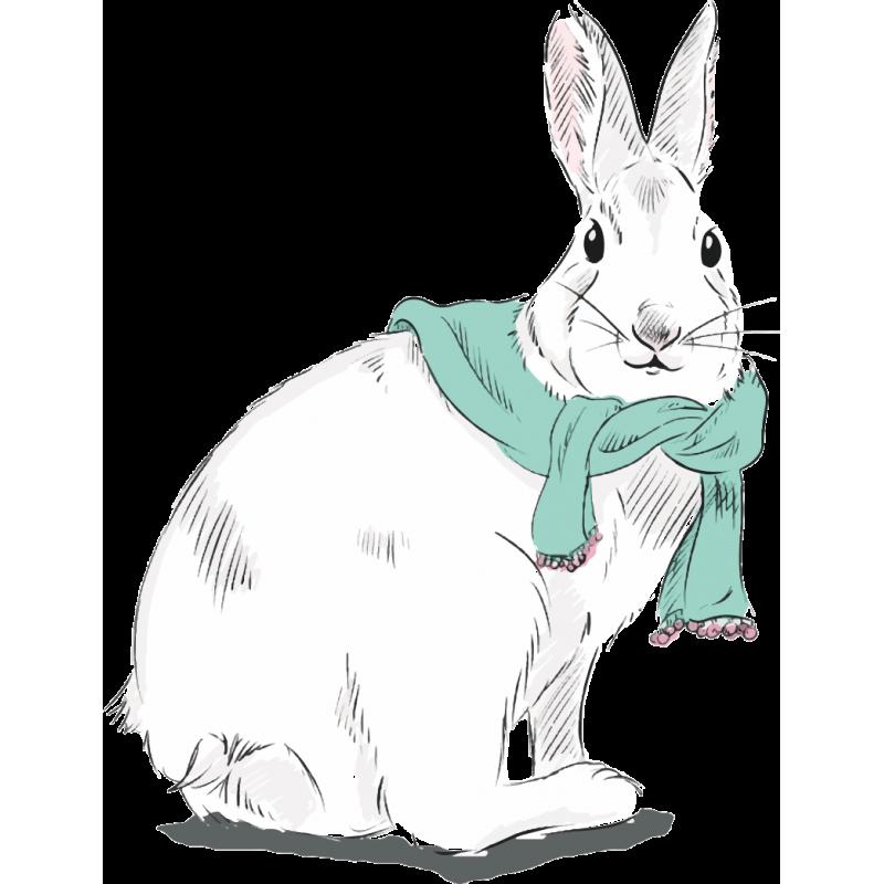 Однокласснице, рисунок с кроликом