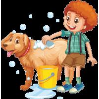 Мальчик моет собаку