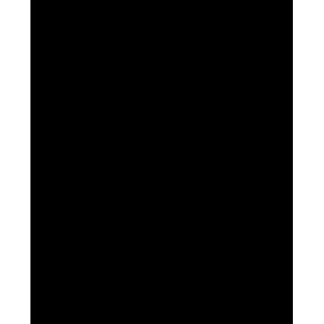 Кайтсерфер в свитче