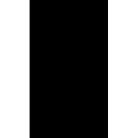 Кайтсерфер в прыжке с грэбом