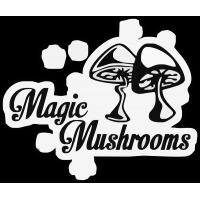 Magic Mushrooms - Галлюциногенные грибы