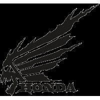 Honda/Хонда с черепом