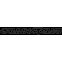 Toyota Caldina Club