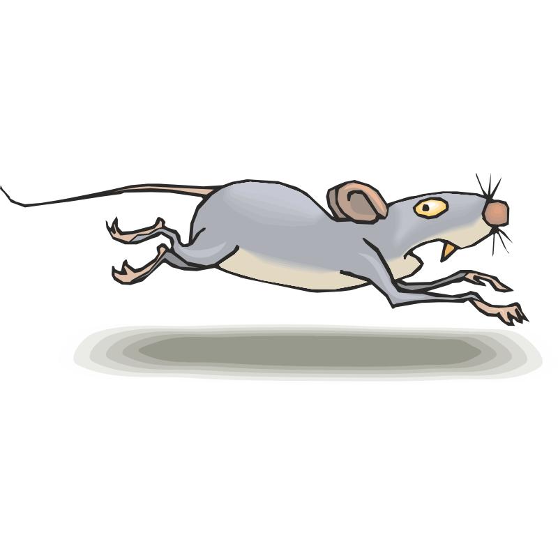 Двигающие картинки с мышами
