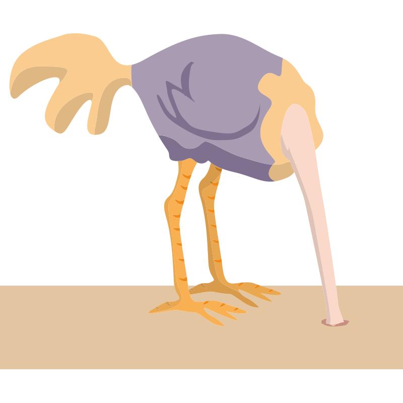 картинки страус с головой в песке