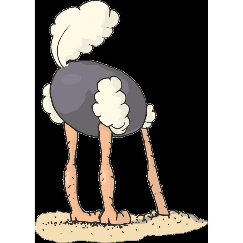 картинки страуса головой в песок шоу есть