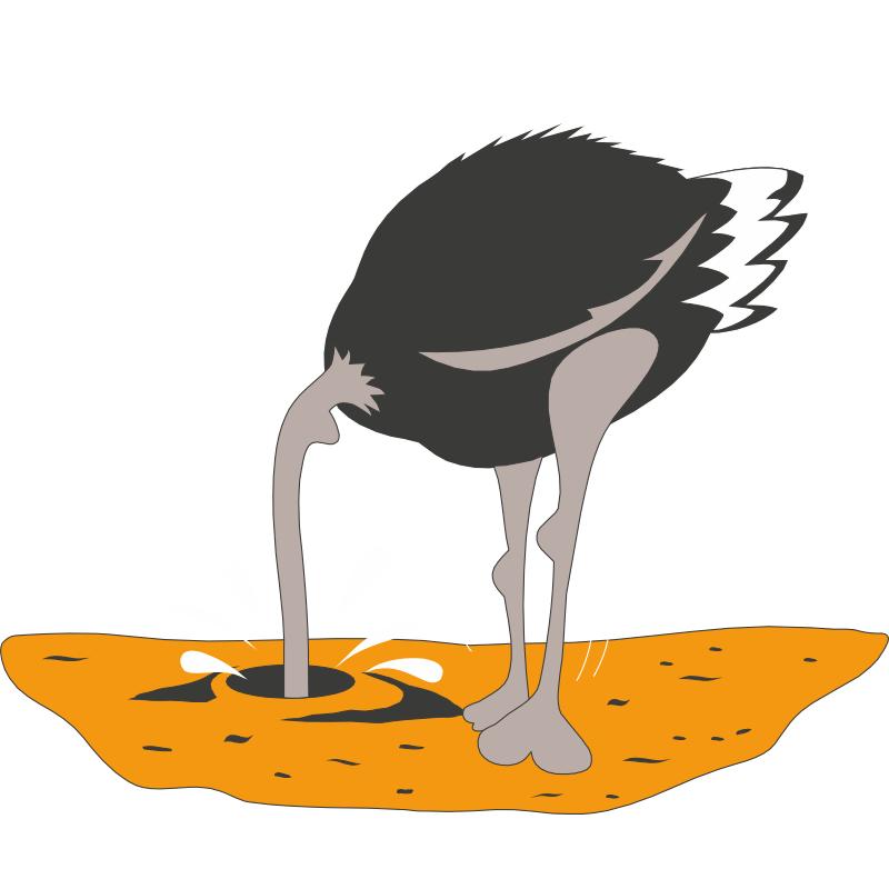 плюсы картинки страуса головой в песок выработки карьеров