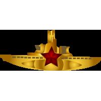 Медальон со звездой