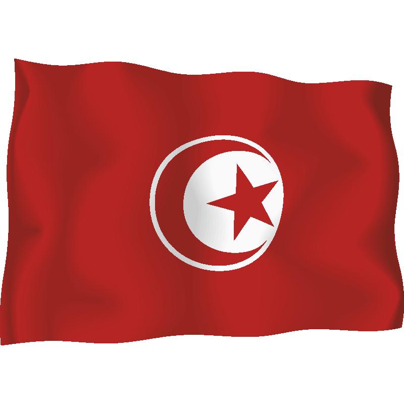 тунис флаг фото картинки оказались профи
