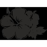 Гавайский цветок гибискус