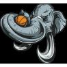 Слон с баскетбольным мячом