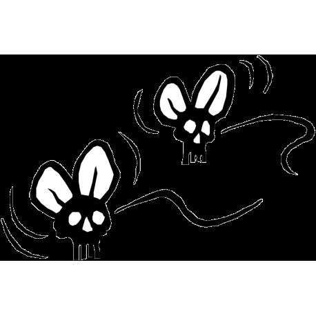 Летающие черепа в стиле Rat Fink