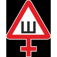 Знак Ш - Шипы женский
