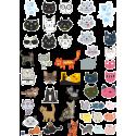 Стикерпак - набор наклеек  кошки