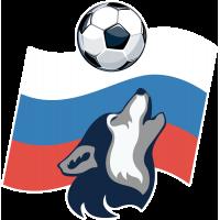 Русский волк, футбольный мяч, Россия 2018, чемпионат.