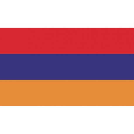 Разноцветная наклейка с флагом россии phantom недорогой купить спарк комбо за бесценок в белгород