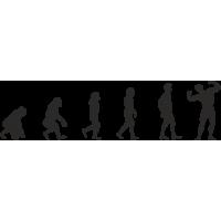 Эволюция от обезьяны до Культуриста