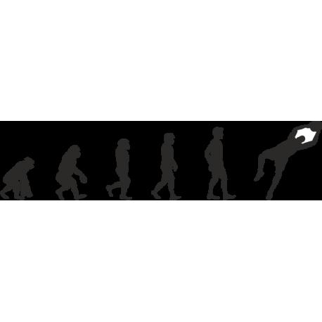 Эволюция от обезьяны до Баскетболиста 2