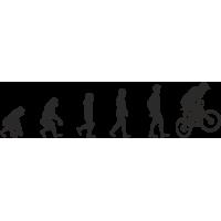 Эволюция от обезьяны до Велосипедиста 3
