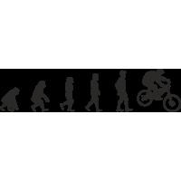 Эволюция от обезьяны до Велосипедиста 4