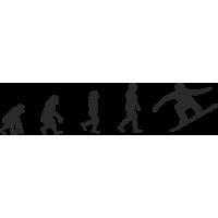 Эволюция от обезьяны до Сноубордиста 2