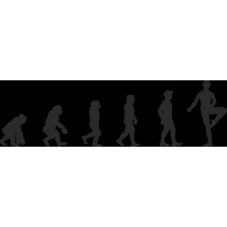 Эволюция от обезьяны до Балерины 1