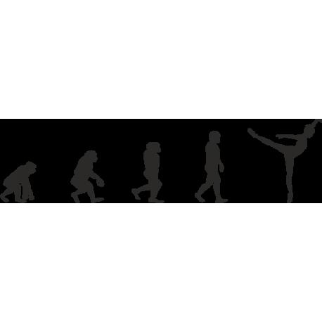 Эволюция от обезьяны до Балерины 2