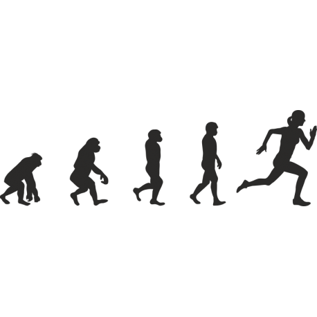 Эволюция от обезьяны до Бегуна 3