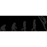 Эволюция от обезьяны до Балерины 3