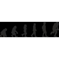 Эволюция от обезьяны до игрока Американского Футбола 1