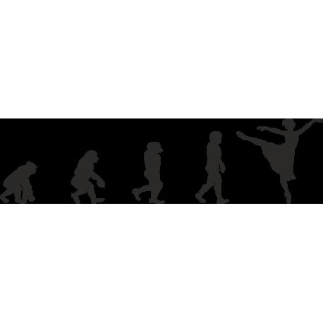 Эволюция от обезьяны до Танцовщицы