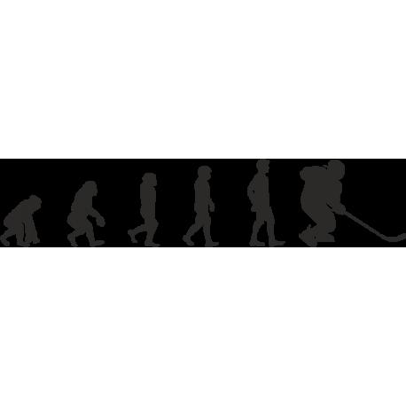 Эволюция от обезьяны до Хоккеиста 3