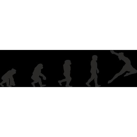 Эволюция от обезьяны до Балерины 4