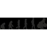 Эволюция от обезьяны до Штангиста 1