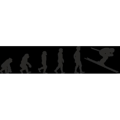 Эволюция от обезьяны до Лыжника 3