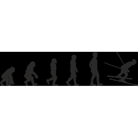 Эволюция от обезьяны до Лыжника 4